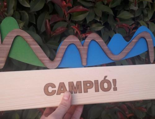 Trofeus amb topper de fusta pintada