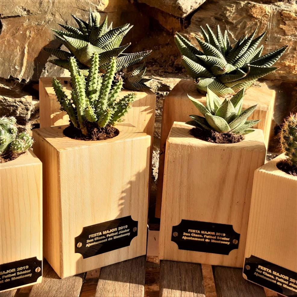 Trofeus planter fusta cactus Montseny